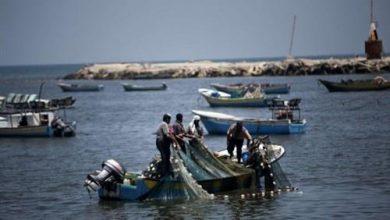 Photo of إسرائيل تقلص مساحة الصيد في غزة إلى أميال