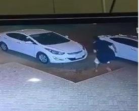 Photo of فيديو غريب للحظة سرقة سيارة في وضع | جريدة الأنباء