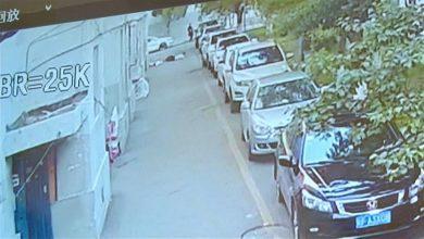Photo of بالفيديو.. لحظة بطولية لشاب انقذ طفلا اثناء سقوطة من الطابق الخامس