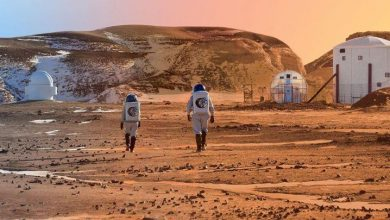 Photo of ناسا تتيح قضاء عطلات في محطة الفضاء الدولية بـ ألف دولار لليلة