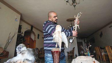 Photo of أفاع وضفادع سامة حديقة حيوان بمنزل   جريدة الأنباء