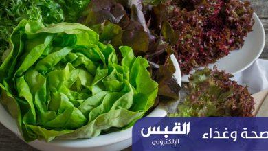 Photo of «الخس».. فوائد صحية وغذائية عديدة
