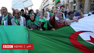 Photo of مظاهرات الجزائر: المجلس الدستوري يُعلن عدم إمكانية إجراء الانتخابات في موعدها