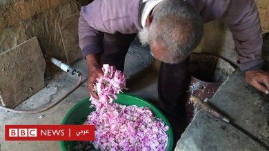 Photo of ماء الورد في سلطنة عمان صناعة تقليدية تتوارثها الأجيال