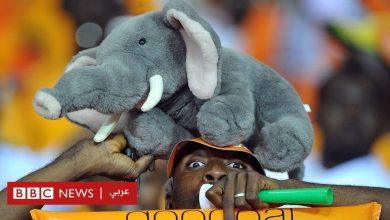 Photo of كأس الأمم الأفريقية 2019: ما بين أسود ونسور وفيلة.. قصص مثيرة وراء ألقاب الفرق الأفريقية