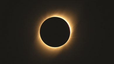 Photo of بالفيديو كسوف الشمس يغرق تشيلي في   جريدة الأنباء