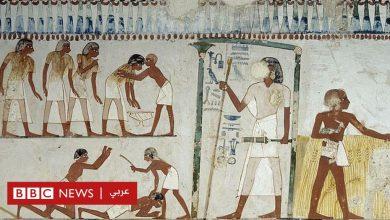 Photo of أبرز الجرائم وأنواع العقوبات في مصر القديمة