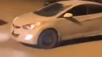 Photo of حركة مفاجئة… ناقة تفاجئ قائد سيارة على طريق عام