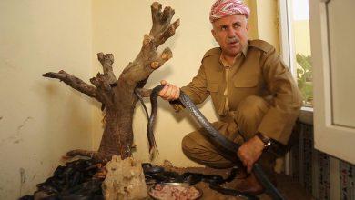 Photo of بالفيديو عراقي يحول بيته إلى موطن | جريدة الأنباء