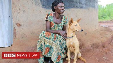 Photo of كلاب لمساعدة ضحايا الحرب في أوغندا