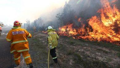 Photo of رجال الإطفاء يكافحون حرائق الغابات في أستراليا