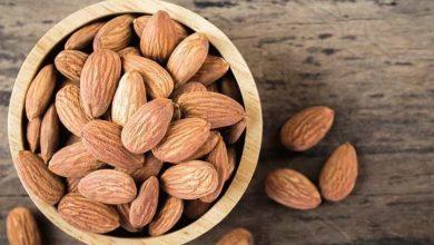 Photo of 8 فوائد صحية لتناول اللوز يوميا   جريدة الأنباء