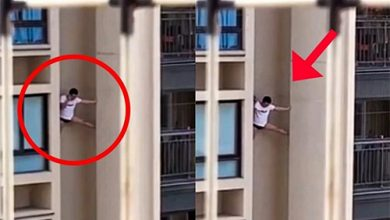 Photo of رجل يثير الدهشة بمحاولة النجاة من موت محتم نتيجة السقوط من مبنى شاهق الارتفاع