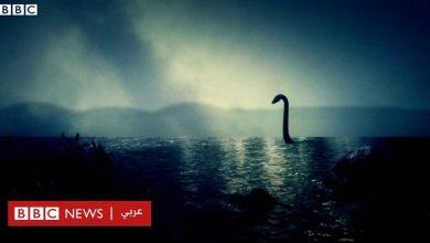 Photo of العلماء يحسمون الجدل حول وحش بحيرة لوخ نس