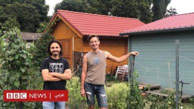 Photo of لماذا تجذب حدائق الخضروات آلاف الشباب في ألمانيا؟