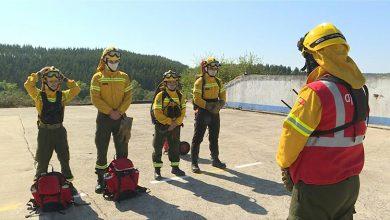 Photo of رجال إطفاء من شركات خاصة يحمون غابات البرتغال