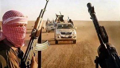Photo of «داعش» يتبنى الهجوم الدامي على جيش مالي