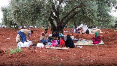 Photo of قسد نزوح ألف مدني جراء عمليات تركيا في سوريا