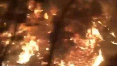 Photo of فيديو من قلب الجحيم هذا ما يواجهه | جريدة الأنباء