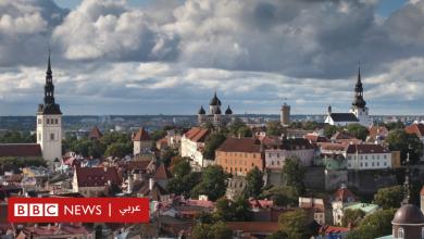 Photo of فئران تعطل خدمات الاقتصاد الرقمي الحيوي في إستونيا بعد شكوك في أعمال قرصنة
