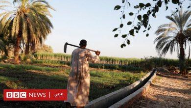 Photo of أسماء قرى في مصر: لماذا يخجل البعض من ذكر اسم قريته