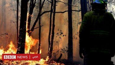 "Photo of حرائق غابات أستراليا: تطوع لإطفاء الحرائق، لكنه ""أشعل مزيدا منها"""