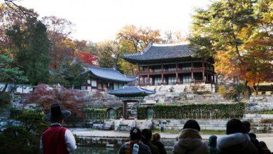Photo of حديقة هوون السرية جنة طبيعية في وسط كوريا