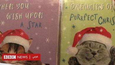 "Photo of سلسلة متاجر بريطانية شهيرة توقف إنتاج بطاقات عيد الميلاد بمصنع صيني ""يجبر السجناء على العمل"""