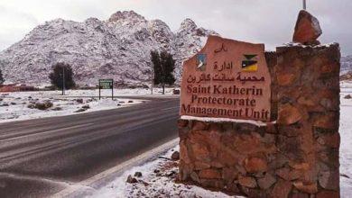 Photo of بالصور الثلوج تغطي مدينة سانت كاترين في سيناء