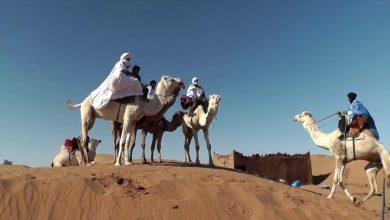Photo of مهرجان الرحل بتويزكي فرصة للاحتفاء بحياة البدو