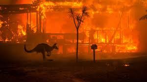 Photo of بالفيديو.. إخلاء مدن بأكملها في أستراليا وسط مخاوف من اشتداد الحرائق مجددا