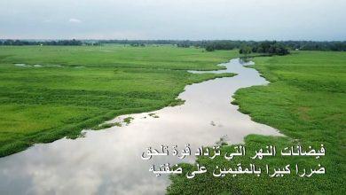 Photo of الحياة في محيط نهر براهمابوترا | جريدة الأنباء