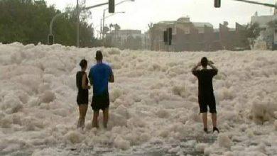 Photo of بالفيديو زبد البحر يغطى شوارع | جريدة الأنباء