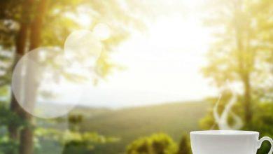 Photo of متى بدأ الناس في تناول القهوة؟