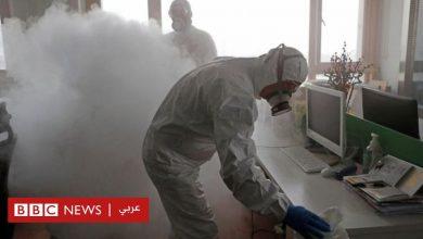 Photo of فيروس كورونا: سلطات مستهترة في دول عربية وتجار لا يرحمون في أخرى
