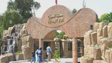 Photo of إغلاق حديقة الحيوان.. حتى إشعار آخر