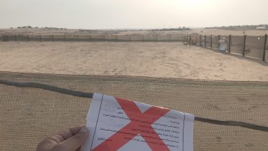 Photo of «البلدية»: إزالة 521 مخيما في بر الجهراء والأحمدي