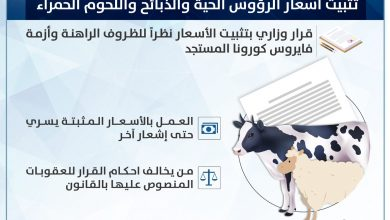Photo of وزارة التجارة الكويتية تثبت أسعار اللحوم