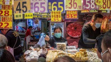 Photo of الصين ترفع القطط والكلاب من قائمة الحيوانات القابلة للأكل