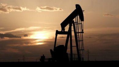 Photo of النفط يهوي بعد زيادة غير مسبوقة لمخزون الخام الأمريكي