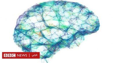 Photo of دراسة عن المخ: آلات تحوّل إشارات المخ إلى عبارات مفهومة
