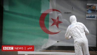 Photo of فيروس كورونا: مصر تغلق 23 منشأة طبية والجزائر تسجل أعلى نسبة يومية للوفيات