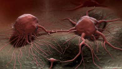 Photo of بارقة أمل علاج سرطان البروستاتا قد يقي من كورونا
