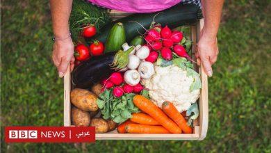Photo of فيروس كورونا: هل يصمد مخزون الغذاء في المنطقة العربية أمام الوباء؟