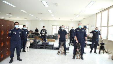 Photo of بالفيديو هل تدمن الكلاب البوليسية | جريدة الأنباء