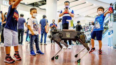 Photo of بالفيديو كلب روبوتي يساعد على تعقيم | جريدة الأنباء