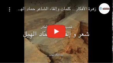 Photo of زهرة الأفكار .. كلمات وإلقاء الشاعر حماد الهمل