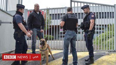 Photo of المخدرات: فرنسا تقرر فرض غرامات على تعاطيها وخاصة القنب