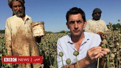 Photo of كيف غيرت الطاقة الشمسية صناعة الهيروين في أفغانستان؟