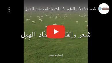 Photo of قصيدة آخر الوفى .. كلمات وأداء حماد الهمل